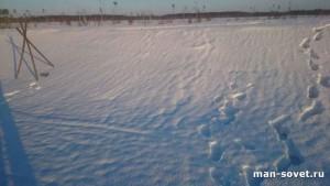 Зима Север следы на снегу